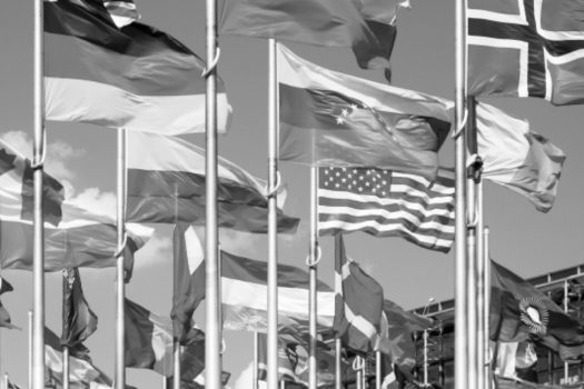 Nationalism, Imperialism, & Joint Adversity